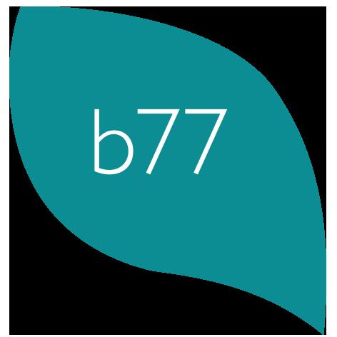 bernette b77